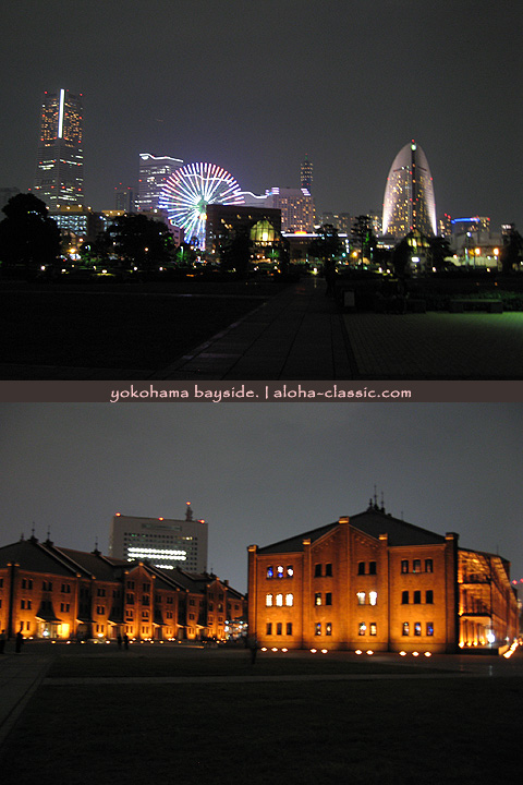 20081111.jpg