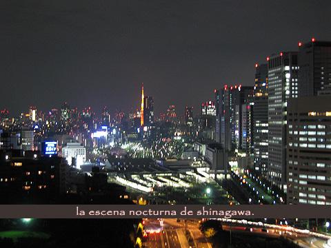 20081112.jpg