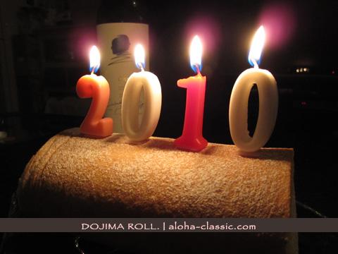 20100103b.jpg